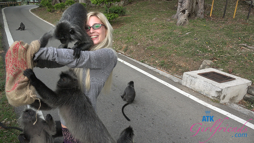 You enjoy watching Piper feed the wild monkeys